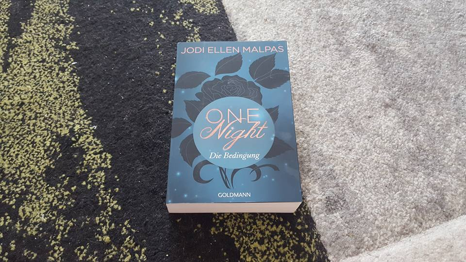 One Night – Die Bedingung – Jodi Ellen Malpas